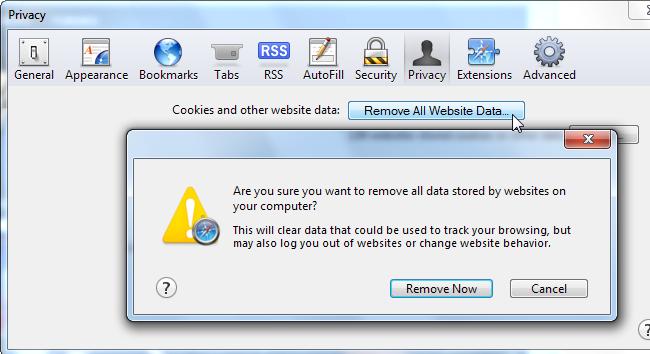 Safary prywatności usunąć wszystkie dane strony internetowej